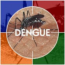 dengue 123