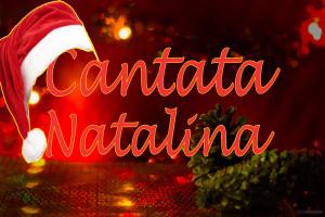Fundo-de-Natal-1355305115_71