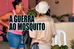 guerra-ao-mosquito