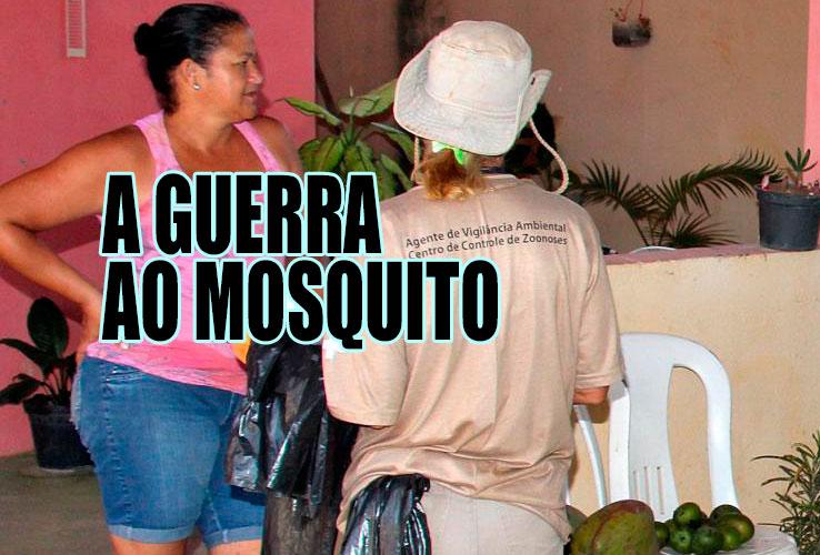 Aedes aegytpi: postos de saúde, de assistência social e escolas em ação para combater o mosquito antes do verão