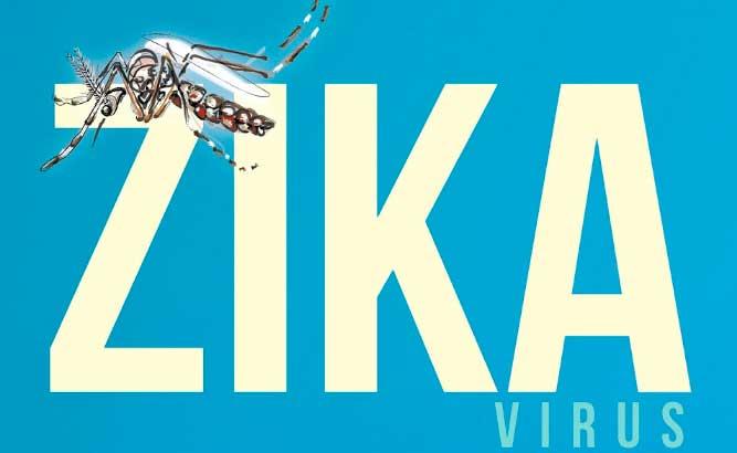 ES tem 109 casos confirmados de zika e sete bebês com microcefalia