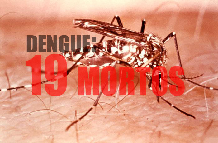 Dengue: 19 mortos em 2016