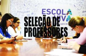 sedu_professores