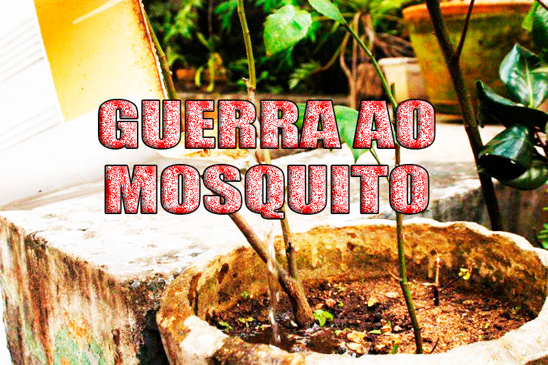 Secretaria de Saúde divulga boletins da Zika, Dengue e Chikungunya