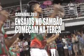 carnaval-ensaios-gvnews