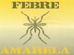febre-amarela-gvnews-1