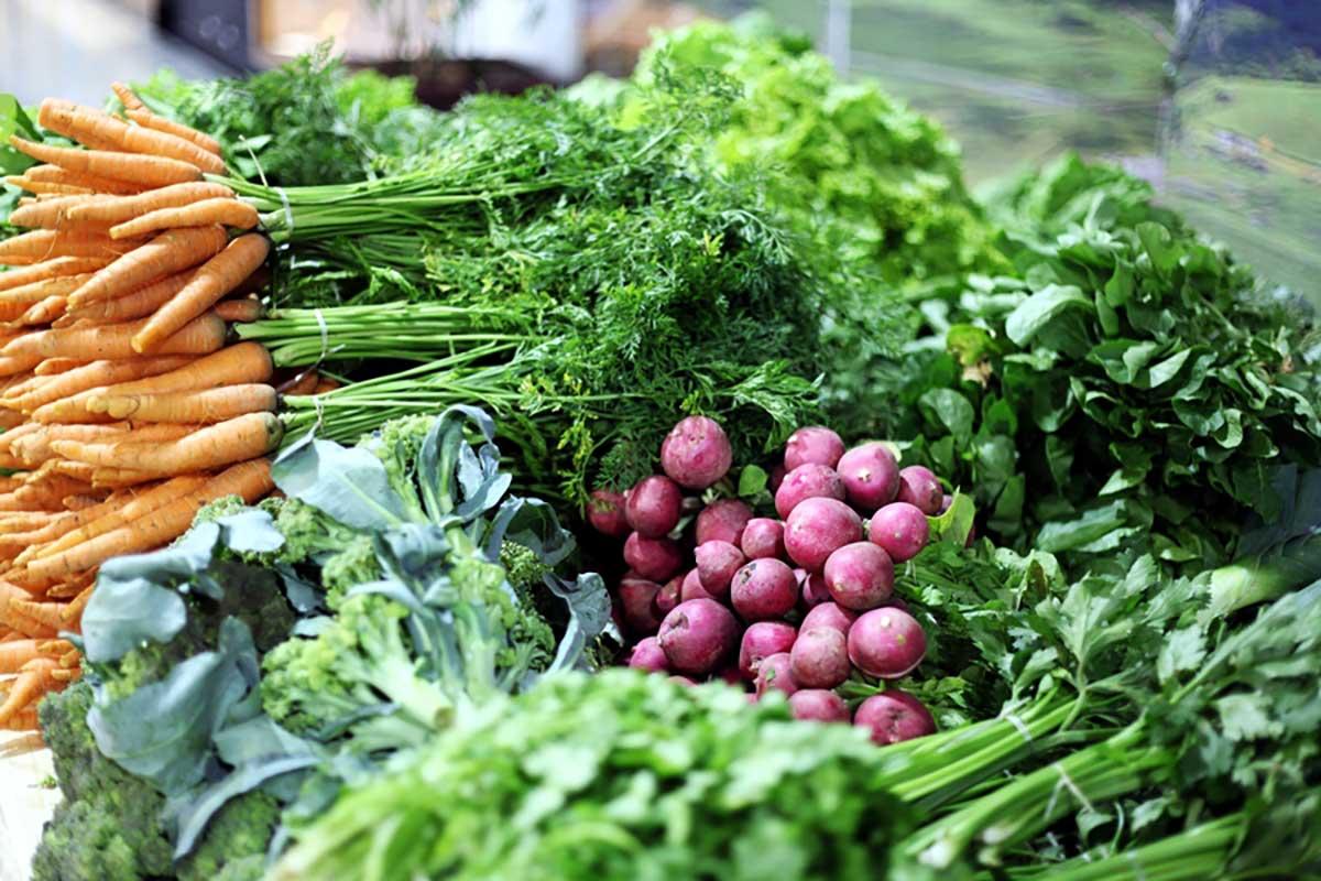 Feira de artesanato da praça dos Namorados terá alimentos orgânicos