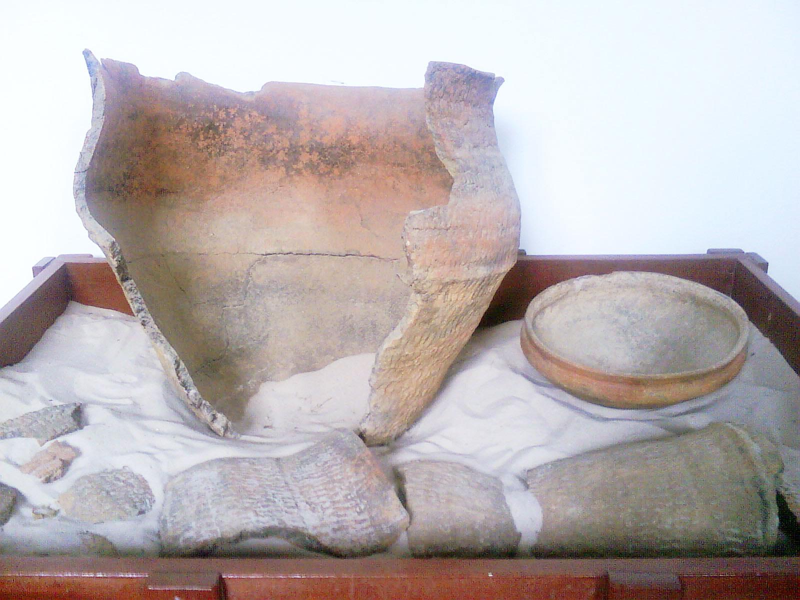 Vitória vai receber grandes nomes da Arqueologia do país