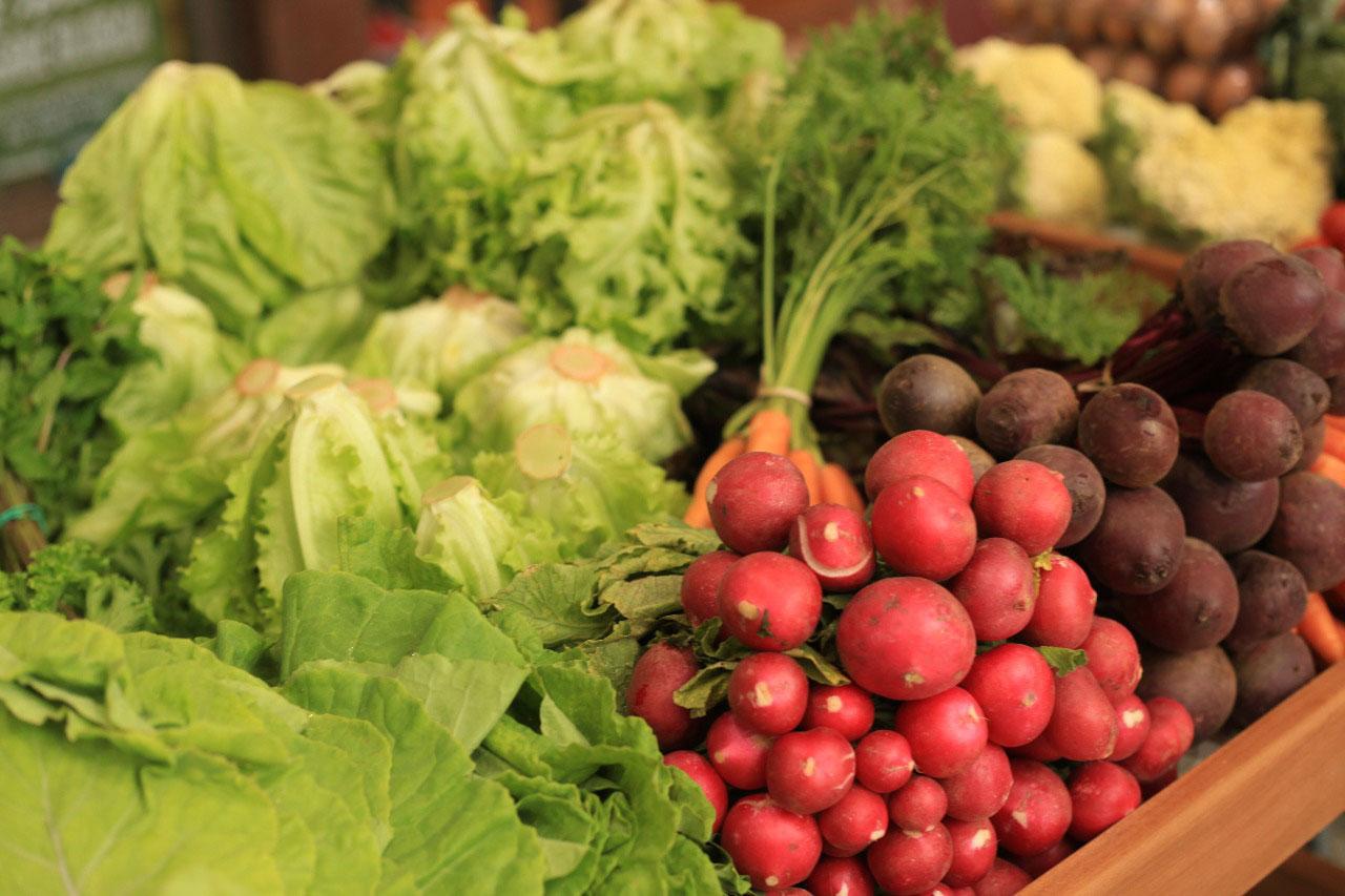 Agricultura familiar ganha Centro de Distribuição na Grande Vitória