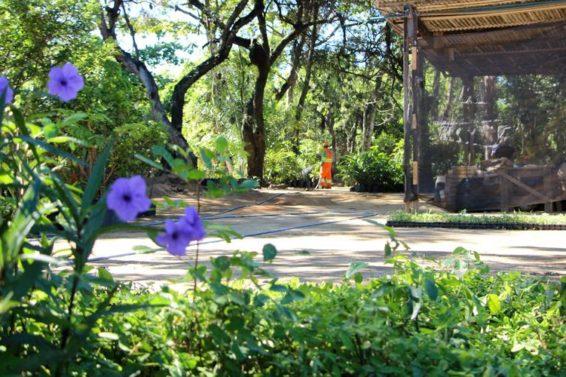 parque de Vila Velha