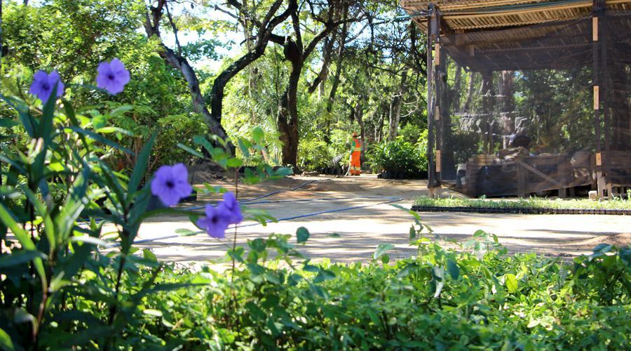 Opção de lazer: visite os parques naturais de Vila Velha