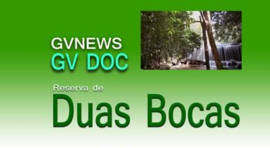 GV-DOC