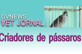 VET-JORNAL